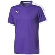 PUMA Voetbalshirt Pitch Paars/Wit Kinderen