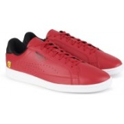 Puma Ferrari SF Match Sneakers For Men(Red)