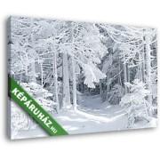 Hóval borított téli erdő (40x25 cm, Vászonkép )