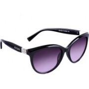 TRUE INDIAN Cat-eye Sunglasses(Violet)