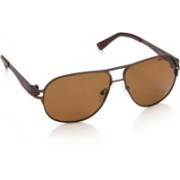 Opium Aviator Sunglasses(Brown)