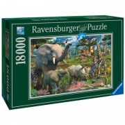 Puzzle Animale in salbaticie 18000 de piese Ravensburger