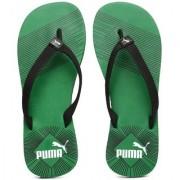 Puma Step In-Stripe Green Flip Flops