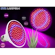 NTR LAMPG14 10W LED növény nevelő lámpa E27 foglalathoz 200db SMD2835 LED