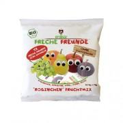 Gustare din Mix de Fructe Bio 5buc x 4gr Erdbar