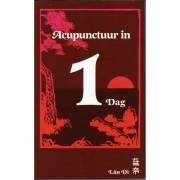 Acupunctuur in een dag - P.C. van Kervel