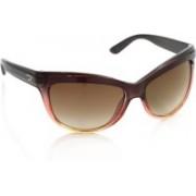 Diesel Cat-eye Sunglasses(Brown)