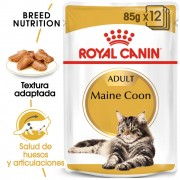 Royal Canin Breed Maine Coon - 24 x 85 g - Pack Ahorro