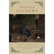 The Secrets of Alchemy, Paperback