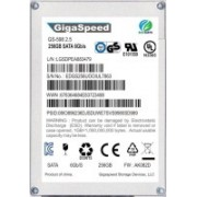 GIGASPPEED SATA 256 GB Laptop Internal Solid State Drive (GS598)