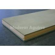 Panel Sandwich Aglo19-Ais40-Aglo10