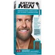 Just For Men Moustache & Beard 1 set No. 035