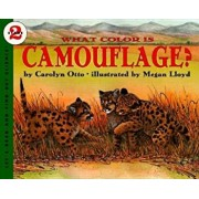 What Color Is Camouflage': An Incredible Story of Hope, Triumph, and Everyday Joy, Paperback/Carolyn B. Otto