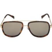 Polaroid Retro Square Sunglasses(Grey)