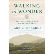 Walking in Wonder: Eternal Wisdom for a Modern World, Hardcover/John O'Donohue