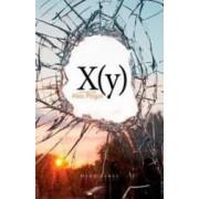 X Y - Alex Pitigoi