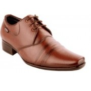 Zebra Light Lace Up Shoes For Men(Tan)