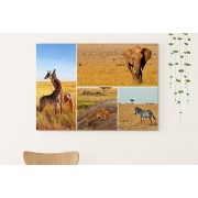 Gallery SI Limited t/a Colour House £10.95 (from Colour House) for an A2 collage canvas or £10.95 for an A1 collage canvas
