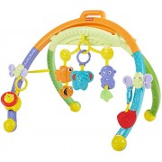 Fisher-Price Growing Baby Folding Activity Gym