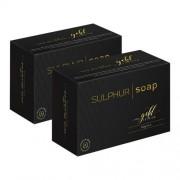 Eco Masters Gold Edition Eco Masters Zwavel zeep – Voor verstopte en vettige huid - 100g x 2 stuks plaatselijke applicatie -