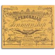 Spencerian Penmanship Copy Bk 2, Paperback/P. R. Spencer