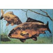 Covor Delphin Crap 3D, 60x40cm, Albastru