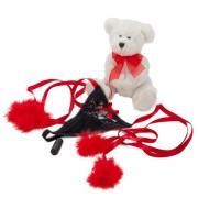 Amour Tease & Please Romance Kit
