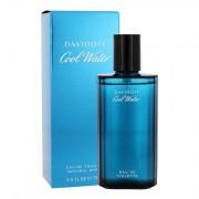 Davidoff Cool Water Eau de Toilette 75 ml für Männer