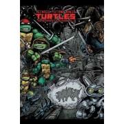 Teenage Mutant Ninja Turtles: The Ultimate Collection, Volume 2, Hardcover