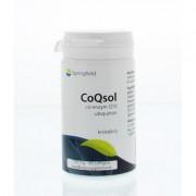 CoQsol coenzym Q10 100 mg