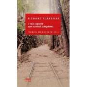 O cale ingusta spre nordul indepartat - Richard Flanagan