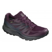 Pantofi alergare Salomon Sense Escape Gore-Tex