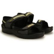 Newport Men D.Gray-Yellow Sports Sandals