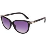 SWAROVSKI Cat-eye Sunglasses(Blue)
