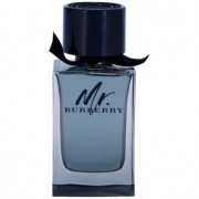 Burberry Mr. Burberry Eau de Toilette para homens 150 ml