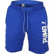 """Pantaloni scurti barbati Puma Style Tec Tr 10"""" 59060010"""