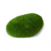 EBI AQUA DELLA MOSS BALL 10x6,5x5cm medium