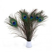 Tradico® Lots 100 Wholesale Natural Real Peacock Tail Eye Feathers 10-12Inches Ornament