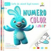 Numero Color Junior - Carte de colorat dupa numere