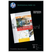 HP Professional - wit