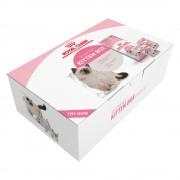 Royal Canin Kitten - Pack de inicio - 400 g pienso y 4 x 85 g comida húmeda