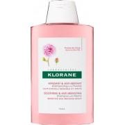 Klorane (Pierre Fabre It. Spa) Klorane Sh Peonia 400ml