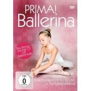 ZYX Music - Prima! Ballerina - Ballettunterricht für Kinder - Preis vom 18.10.2020 04:52:00 h