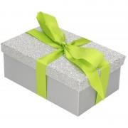 Merkloos Cadeau gift box zilver glitter 15 x 9 cm en lichtgroen kadolint