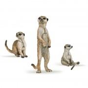Cutie set 3 manguste - Set figurine Papo