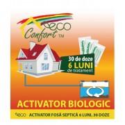 Bioactivator intretinere fosa 6 luni, 30 doze (750 gr) ECO CONFORT, cod 1002800