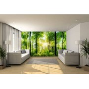 Fotobehang expositie kwaliteit 400x450 cm