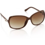 Allen Solly Over-sized Sunglasses(Brown)