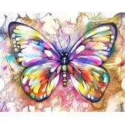 Gaira Malování podle čísel Motýl M991854Z