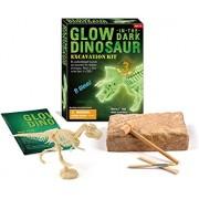 zhiyu&art decor Dinosaur Excavation Kit,Glow in The Dark Dino Fossil Dig Kit for Kids Dino Assemble Model